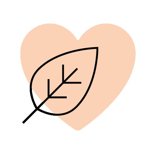 icon-4-05